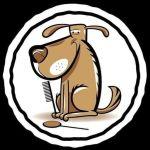 Uw Hippe Hond Trimsalon & Shop
